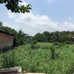Cần Bán gấp Lô Đất: phường An lạc, Bình Tân: