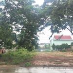 BÁN NHANH 450M2 ĐẤT THỔ CƯ, SỔ RIÊNG TRONG KHU ĐÔ THỊ MỚI BÌNH DƯƠNG, ĐẤT GẦN CHỢ, KCN