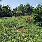 cần bán 1450m2 đất vườn 160m thổ cư, có nhà.tại BÌNH QUỚI. giá bán 9 tỷ.LH 0945917301 MẠNH