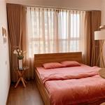 Căn hộ cao cấp 2 phòng ngủ khu Trung Sơn mặt tiền đường 9A full nội thất