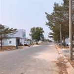 Bán đất Bình Chánh 30tr/m2 ngay vòng xoay Tỉnh Lộ 10 thổ cư 100% Sổ Hồng Riêng