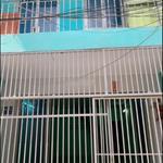 Cho thuê nhà 1 trệt 1 lầu hẻm xe hơi tại Kênh Tân Hóa P Hòa Thạnh Q Tân Phú giá 8,5tr/th