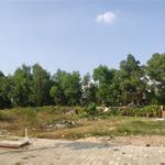 Sang gấp lô đất Bình Chánh giá rẻ Diện Tích xây Biệt Thự 300m2 Sổ Hồng Thổ cư 100%