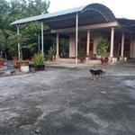 Cần Bán Nhà Và Đất: Quốc lộ 13 xã Lai Hưng, huyện Bàu bàng , Tỉnh Bình Dương
