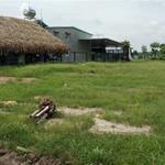 Chính chủ bị bệnh nen về quê nên cần bán gấp lô đất ,so hồng riêng,thổ cư , giá 350tr