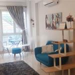 Chính chủ cho thuê căn hộ mini 40m2 1pn Full nội thất ngay trung tâm Võ Thị Sáu P7 Q3