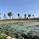 Biệt Thự Cao Cấp Ven Sông Bật Nhất Sài Gòn