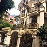 (10x16m) căn VILLA mini 4 lầu - sân đậu 2 ô tô, đường Nguyễn Thái Bình – khu K.300 - P.12 - TB (hh)