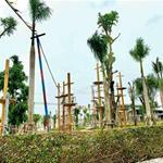 Đất nền ngay sân bay Long Thành_chiết khấu khủng phân khu mới.