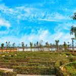 Đất nền gần sân bay long thành - điểm nhấn của tỉnh đồng nai