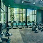 Cần cho thuê căn hộ duplex Vista Verde 3PN, 106m2 nội thất cao cấp