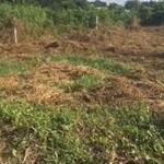 Chính chủ kẹt tiền bán đất 6x42 số đỏ trao tay tại Võ Thị Sáu Huyện Đất Đỏ Bà Rịa
