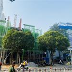 Phố Thương Gia, Nhà Phố - Biệt Thự Bảo Sơn Residence, MT Nguyễn Sơn, Tân Phú.