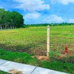 Gia Đình bán lô đất 6.179m2 (56x110) ở sau lưng UBND Xã Nhuận Đức huyện Củ Chi. Giá 1triệu/m2