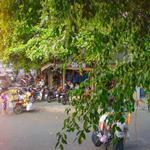 (12 x 30m) Bán biệt thự nhà vườn khu Bàu Cát - p.14 (hh)