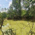 Bán đất vườn nghỉ dưỡng 1000m2 quy hoạch màu hồng full TC 100% ở Đồng Nai,NH cho vay 70%.0932056011