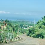 Ngộp NH ông a cần bán gấp miếng đất vườn 1000m2 giá 550tr ( đất q/h ONT) ở Đồng Nai.