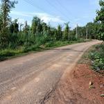 Chính chủ bán gấp lô đất đẹp giá tốt mặt tiền 10m tại Tân Tiến - Bù Đốp - Bình Phước