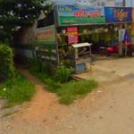Chính chủ bán gấp nhà cấp 4 DT 11x24 Mặt tiền đường An Phú P An Phú Đông Q12