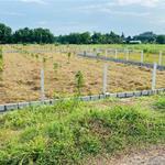 Đất vườn 525m2 đường Ba Sa, SHR. Giá 1,2 đường 12m, Phước Hiệp Củ Chi