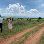 Bán 1ha đất vườn Hồng Thái, gần kênh nước, đường liên huyện, 90 ngàn/m2