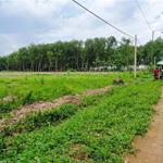 Hot Hot Hot Bán đất nền 5x42 tại KDC Tân Quan ngay trung tâm Hớn Quản - Bình Phước