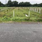Kẹt tiền bán gấp 250m2 đất, giá 700tr, sổ sẳn, đường 1 sẹt TL7 Củ Chi