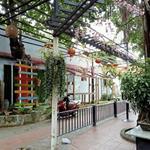 Sang gấp quán Cafe Sân Vườn 1600m2 tại Nguyễn Thị Búp P Hiệp Thành Q12