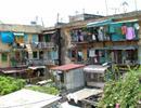 Mua nhà theo NĐ 61/CP: Sẽ phân loại các trường hợp vướng mắc