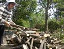 92,5% người dân chưa hài lòng khi bị thu hồi đất