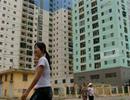 Không cho chẻ nhỏ căn hộ dự án khu trung tâm