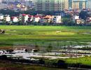 Đất ở tại Nghệ An có mức giá tối đa 51 triệu đồng mỗi m2