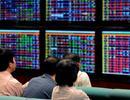 Cổ phiếu bất động sản kỳ vọng bùng nổ trong năm 2015