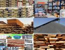 Mỹ: Giá VLXD có xu hướng tăng nhẹ