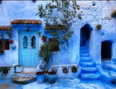 Ngẩn ngơ với những ngôi nhà xanh mướt như trong truyện cổ tích