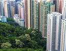 Bất động sản Hồng Kông bước vào cơn sốt mới