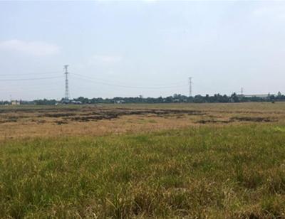 Đất nền Sài Gòn quay đầu giảm giá