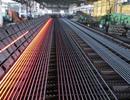 Giá thép tăng kéo chi ngoại tệ nhập khẩu thép tăng hơn 1 tỷ USD