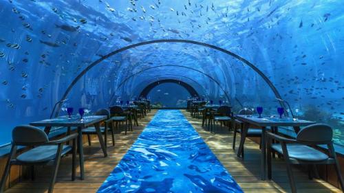 Bên trong nhà hàng kính dưới nước lớn nhất thế giới