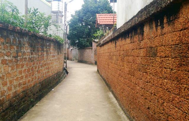 """Đại gia xứ Đoài: """"Biệt phủ"""" đá ong gỗ mít bậc nhất đất Việt"""