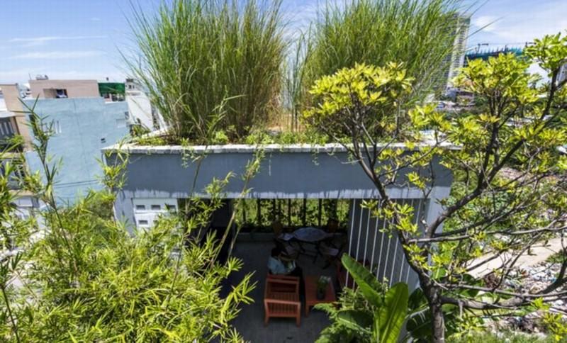 Thiết kế văn phòng bao phủ bởi cây xanh tại Đà Nẵng