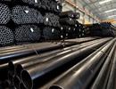 Thép Việt kiến nghị khiếu nại WTO việc bị Mỹ tăng thuế