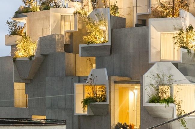 """Thiết kế nhà giống một cái cây, kiến trúc sư tạo ra """"thành quả"""" khiến ai cũng bất ngờ"""