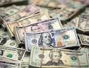 Tỷ giá ngoại tệ ngày 11/8: USD lên mức cao nhất 13 tháng