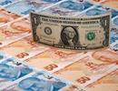 Tỷ giá ngoại tệ ngày 20/8: USD tiếp tục đà giảm mạnh