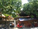 Những khu ổ chuột nhếch nhác 'treo' trên di sản văn hoá thế giới ở Huế