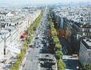 Nghệ An quy hoạch đại lộ Vinh - Cửa Lò dài hơn 11 km