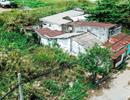 TPHCM: Cuối năm 2019 xây xong khu tái định cư Safari Củ Chi