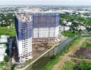 Dự án Marina Tower lấn rạch: Chỉ phạt hành chính sẽ tạo tiền lệ xấu
