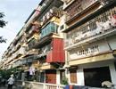 HoREA kiến nghị chú trọng công tác cải tạo xây dựng chung cư cũ